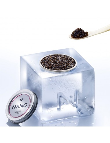 Caviar On The Rocks – Ice cubes mould