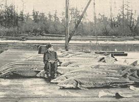 poissons à l'ancienne