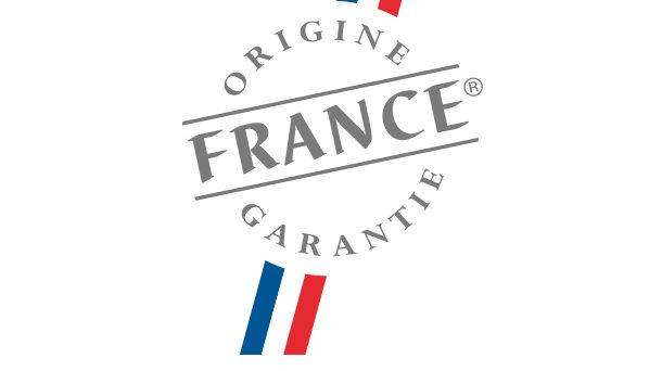 Logo Origine France Garantie